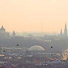 Fog over Lviv by Oleksii Rybakov