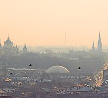 Fog over Lviv by Oleksiy Rybakov