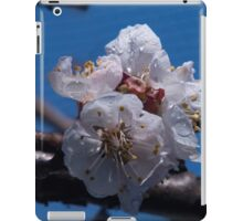 Apricots-to-be iPad Case/Skin