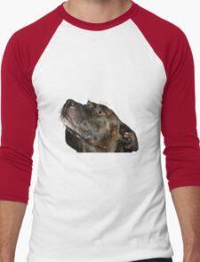 Cute Staffie Men's Baseball ¾ T-Shirt