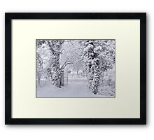 All Dressed in White !!! Framed Print