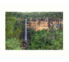 Fitzroy Falls, NSW, Australia Art Print