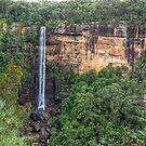 Fitzroy Falls, NSW, Australia by Adrian Paul