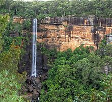 Fitzroy Falls, NSW, Australia by Adrian Paul