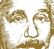 Albert Einstein visionary in modern physics Sticker