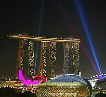 Light Delight - Singapore by Leanne Allen