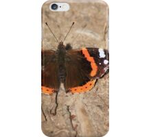 Red admiral on garden path iPhone Case/Skin