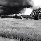 Storm Chaser 2  by Marijane  Moyer