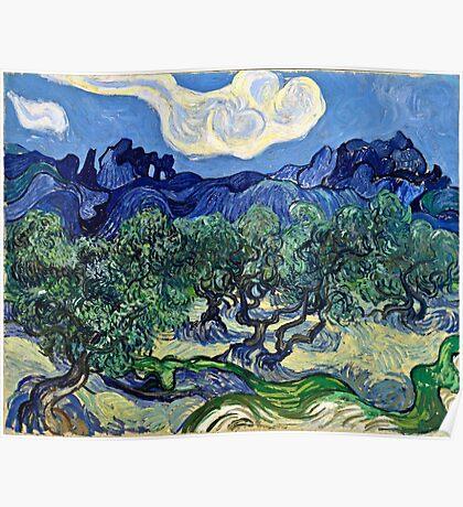 Vincent Van Gogh -  Olive Trees, 1889  Poster