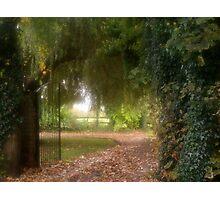 Pathway Home Photographic Print