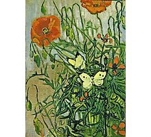 Vincent Van Gogh - Butterflies And Poppies, April 1890 - May 1890  Photographic Print