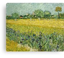 Vincent Van Gogh - Field With Flowers Near Arles, 1888  Canvas Print