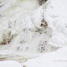Winter's Architecture - Chutes de Plaisance / Plaisance Falls by Yannik Hay
