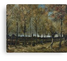 Vincent Van Gogh - Lane With Poplars, 1885 Canvas Print