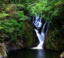 Magical Woodland Waterfall by MandyJervis