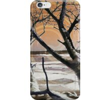 Frozen in Time 2 iPhone Case/Skin