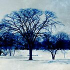 Winter Blues by SRowe Art