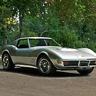 1970 Chevrolet Corvette Stingray 1 by DaveKoontz