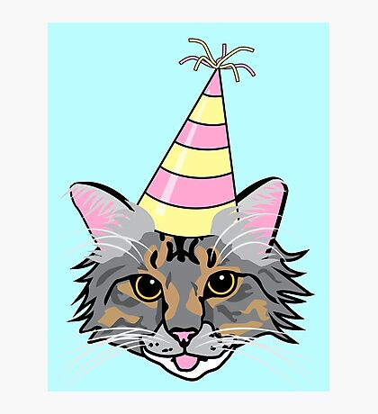 Party Cat Photographic Print