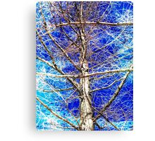 Tangled Web Canvas Print