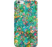 Fairy Playground iPhone Case/Skin