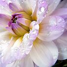 Tearful! by naturelover