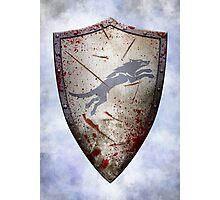 Stark Shield - Battle Damaged Photographic Print