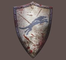 Stark Shield - Battle Damaged by HankTheTurtle