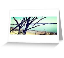 DriftwoodBranch's Artistic Photograph Greeting Card