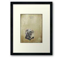 Sorbet Framed Print