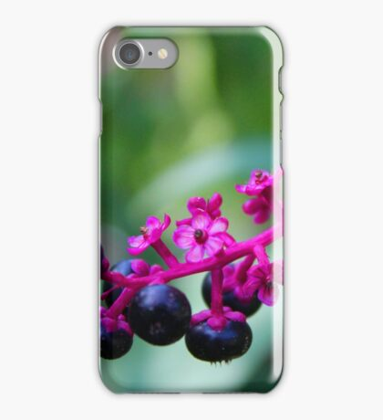 Flowers 11 iPhone Case/Skin