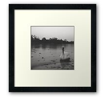 Witchcraft III Framed Print