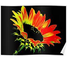 Crazy Sunflower  Poster