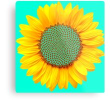 Sunflower Formation  Metal Print