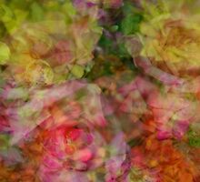 Entangled Flowers #1 by mrthink