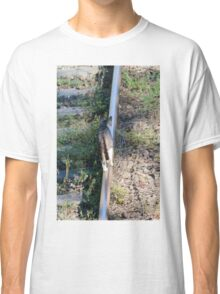 cat on the rails Classic T-Shirt