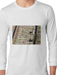 cat on the rails Long Sleeve T-Shirt
