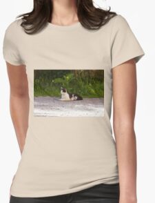 curious cat Womens Fitted T-Shirt