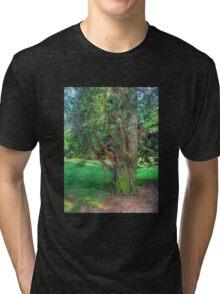 Twisted Tree Tri-blend T-Shirt