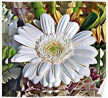 White Gerbera Daisy and Lily Buds Poster
