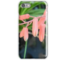 Dangling blossoms iPhone Case/Skin