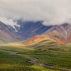Denali Polychrome From The Air by Robert Kelch, M.D.