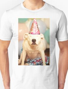 Happy Birthday! T-Shirt