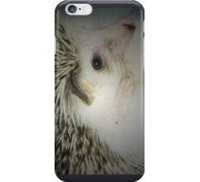 hedgehog curled in a ball iPhone Case/Skin