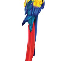 Stunning Parrot by cartoon