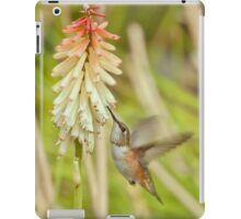 Rufous Hummingbird iPad Case/Skin