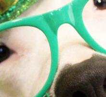 St Patricks Day Dog Sticker