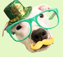 St Patricks Day Dog by Believeabull