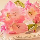Gladiolas In Pink by Sandra Foster
