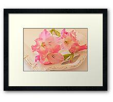 Gladiolas In Pink Framed Print